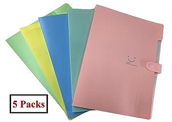 Carpeta Clasificadora Acordeon A4, Carpetas Archivadoras, Carpetas Plastico para Oficina, Hogar, Escuela, Viajes (Lote de 5): Amazon.es: Oficina y papelería