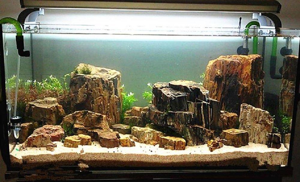 Amazon Com Gracesdawn Aquarium Fish Tank Petrified Wood Random