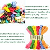 Embroidery Floss Cross Stitch Thread - 100 Skeins