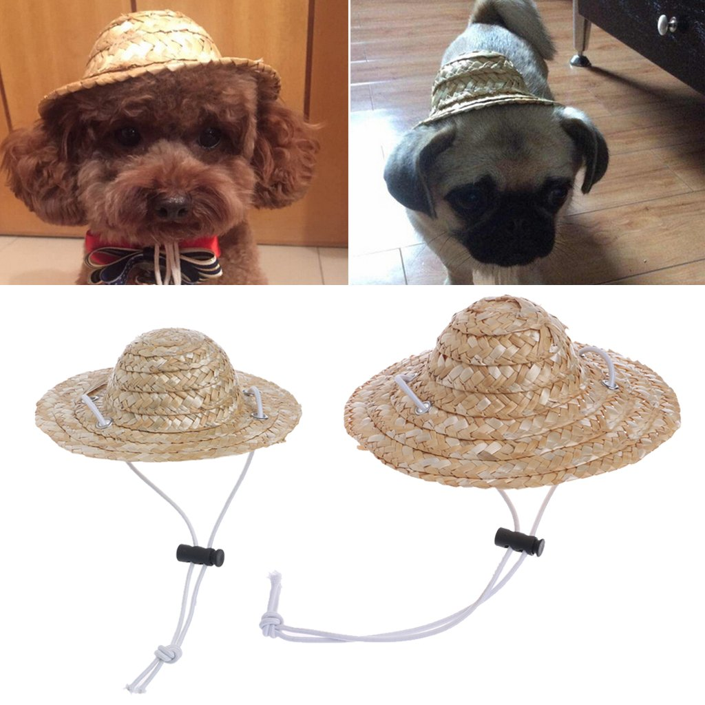 Amrka Hawaiian Style Pet Sombrero Hat for Dog Cat Diameter 14cm/5.51'' 16cm/6.30'' (S)