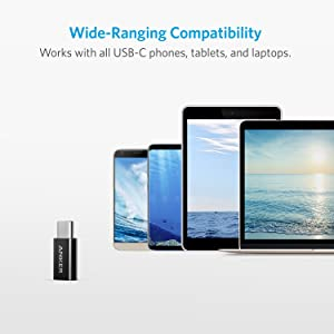 Anker USB-C to Micro USB Adapter [4-Pack] , Converts USB Type-C input to Micro USB, Uses 56K Resistor, Works with Galaxy S8, S8+, S9, MacBook, Sony XZ, LG V20 G5 G6 and More(Black) (Color: Black, Tamaño: 4 Pack)