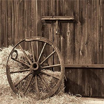 Amazon Lfeey 10x10ft Wooden Barn Door Backdrop Western Country
