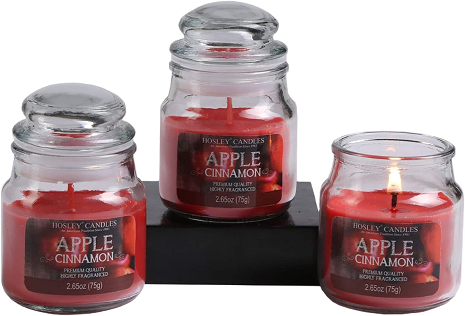 Hosley's Set of 3, 2.65 oz. Apple Cinnamon Fragrance Jar Candle