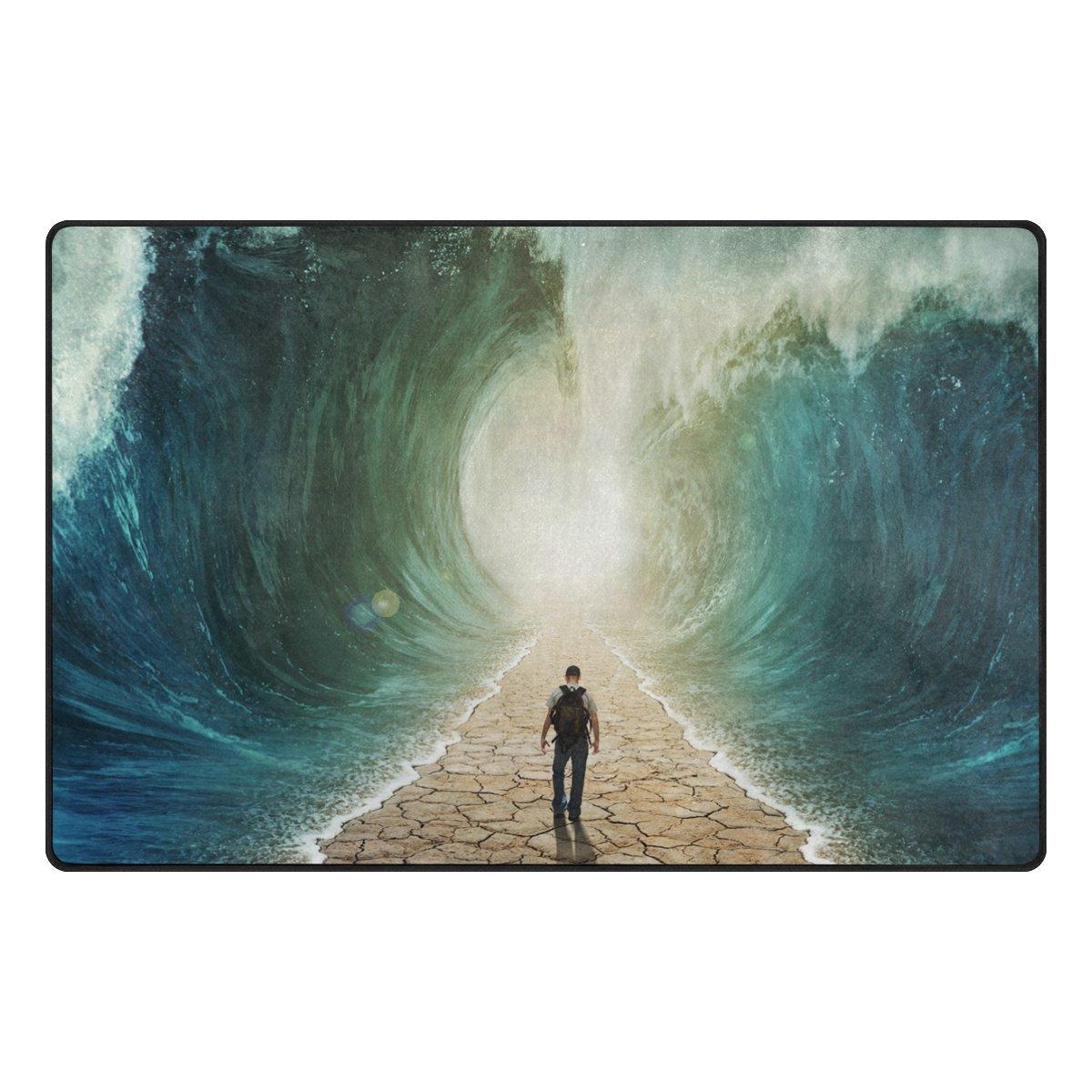 Bennigiry Rango de andar por agua Alfombra antideslizante Diario de DF920felpudos para salón dormitorio 78,7x 50,8cm, poliéster, multicolor, 31 x 20 inch