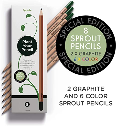 Sprout Plantable Coloring Pencils with Seeds |Box of 8| in Natural Sustainable Wood | Perfect for Coloring Books.