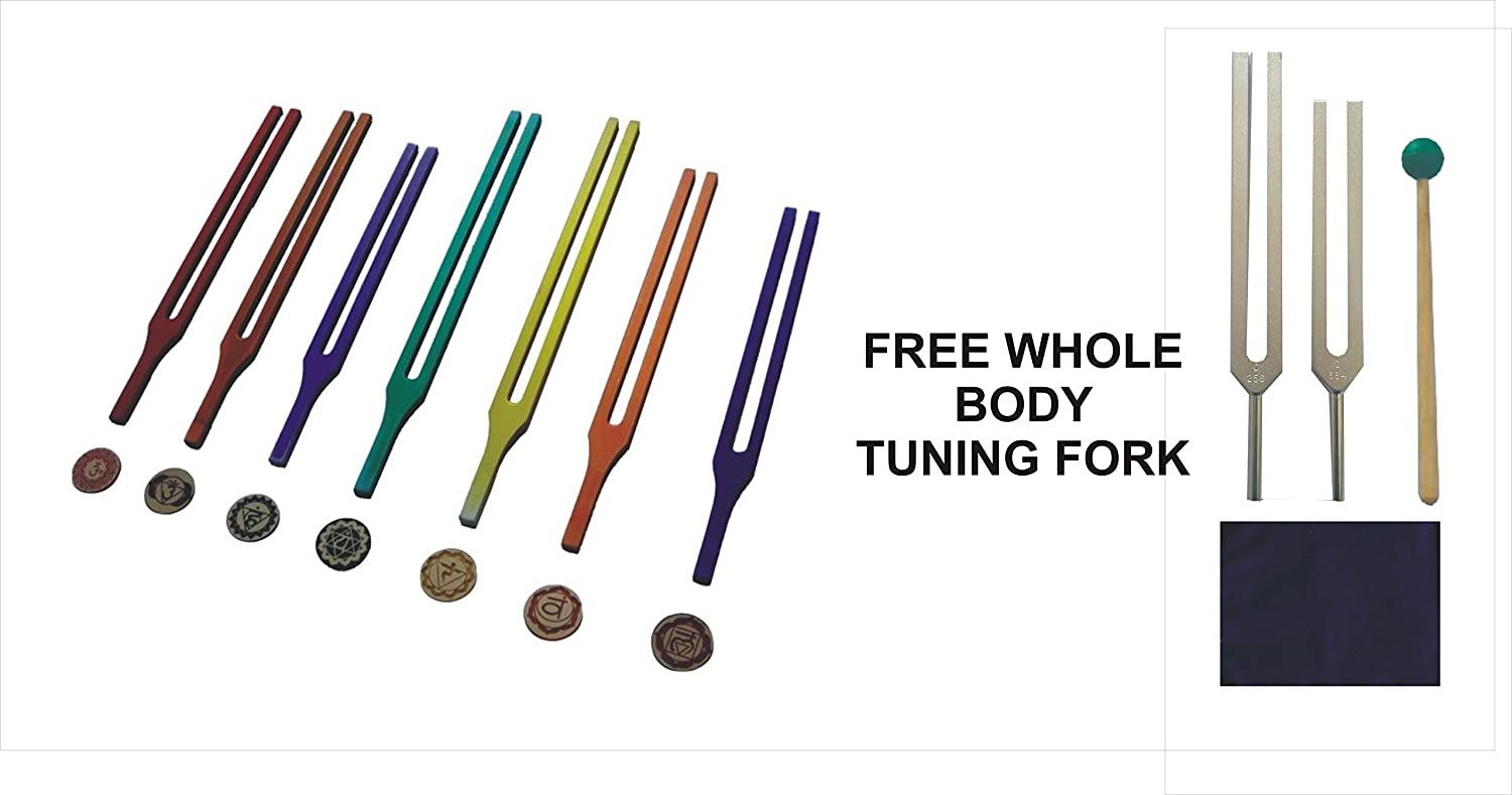 Whole B015SX0F9O Body Tuning Fork Free With With Chakra Color Therapy Therapy With Rubber Mallet and Pouch B015SX0F9O, 大郷町:95b6f081 --- verkokajak.se