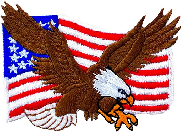 USA American Flag Bald Eagle Embroidered Iron On Patch Patriotic Biker