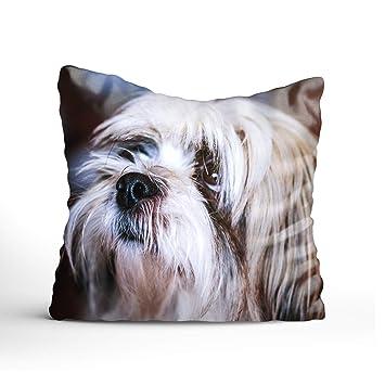 Amazon.com: buybuybuysell Funda de almohada decorativa funda ...