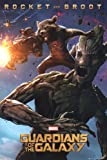 Guardians Of The Galaxy - Rocket & Groot Poster 24 x 36in