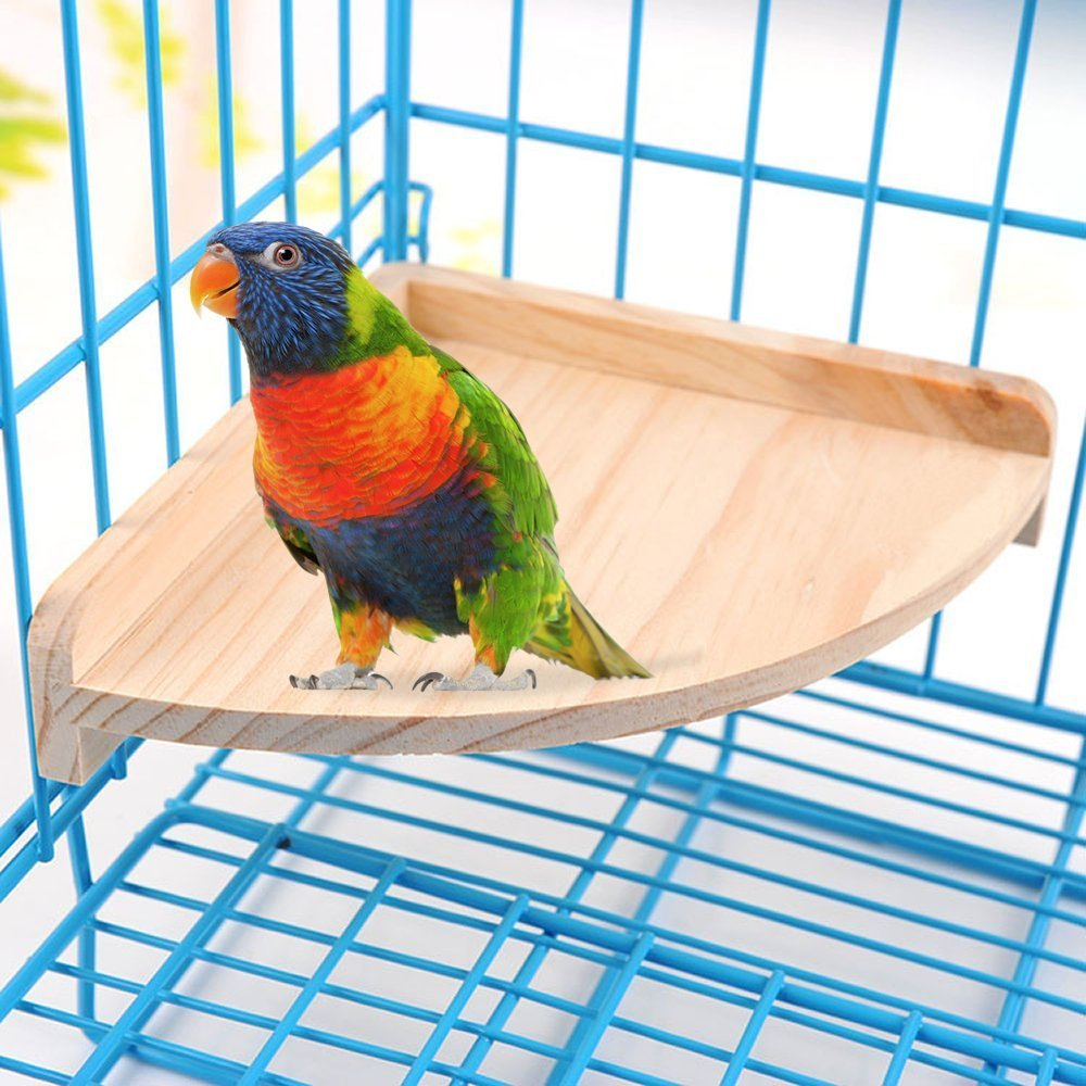 ASOCEA Pet Toy Fan-Shaped Small Springboard Wooden Platform Stand Wood for Parrot Hamster&Other Small Animals