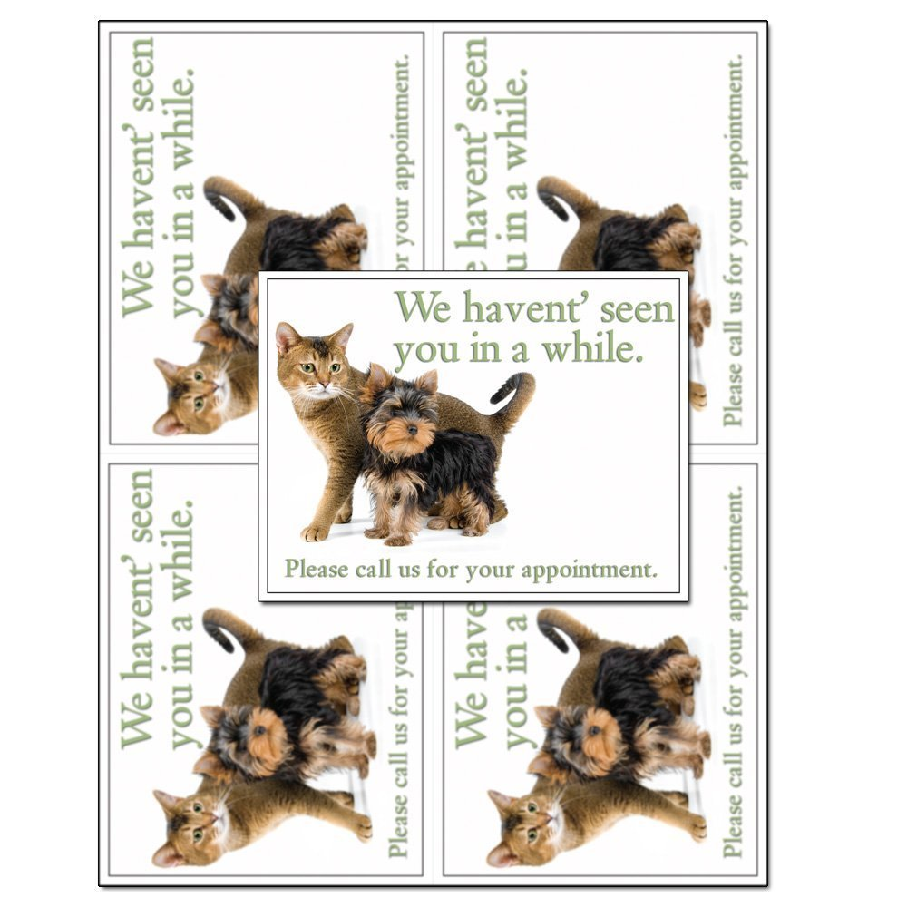 Laser Reminder Postcards, Veterinarian Appointment Reminder Postcards. 4 Cards Perforated for Tear-Off at 4.25'' x 5.5'' on an 8.5'' x 11'' Sheet of 8 Pt Card Stock. (1000 Cards)
