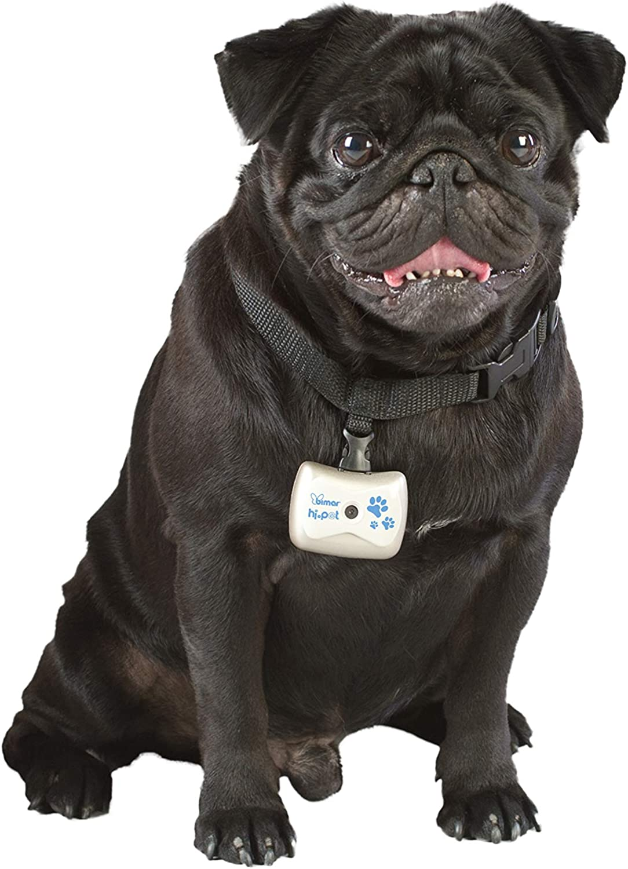 HI.PET Collar Ajustable PFTC1 con Cámera de Video Digital y ...