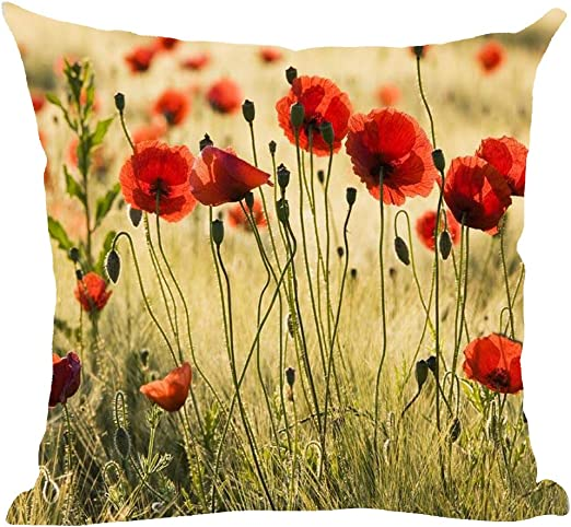Amazon Com Ramirar Hand Painted Ink Oil Painting Watercolor Red Poppy Flowers Retro Yellow Background Decorative Throw Pillow Cover Case Cushion Home Living Room Bed Sofa Car Cotton Linen Square 18 X 18