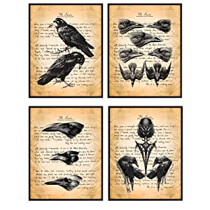 Goth, Gothic Edgar Allan Poe, The Raven Poem Wall Art Decor Set - Rustic Vintage Crow Home Decoration for Living Room, Office, Bedroom, Bathroom - Cool Gift - 8x10 Creepy UNFRAMED Haeckel Posters