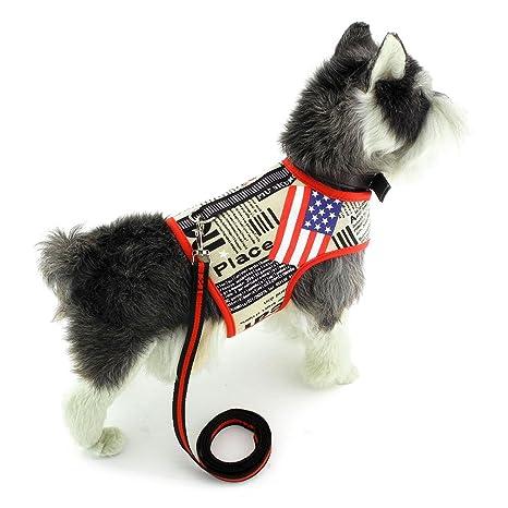 Ranphy Pequeño Perro/Gato 4 de Julio Chaleco de Malla patriótica ...