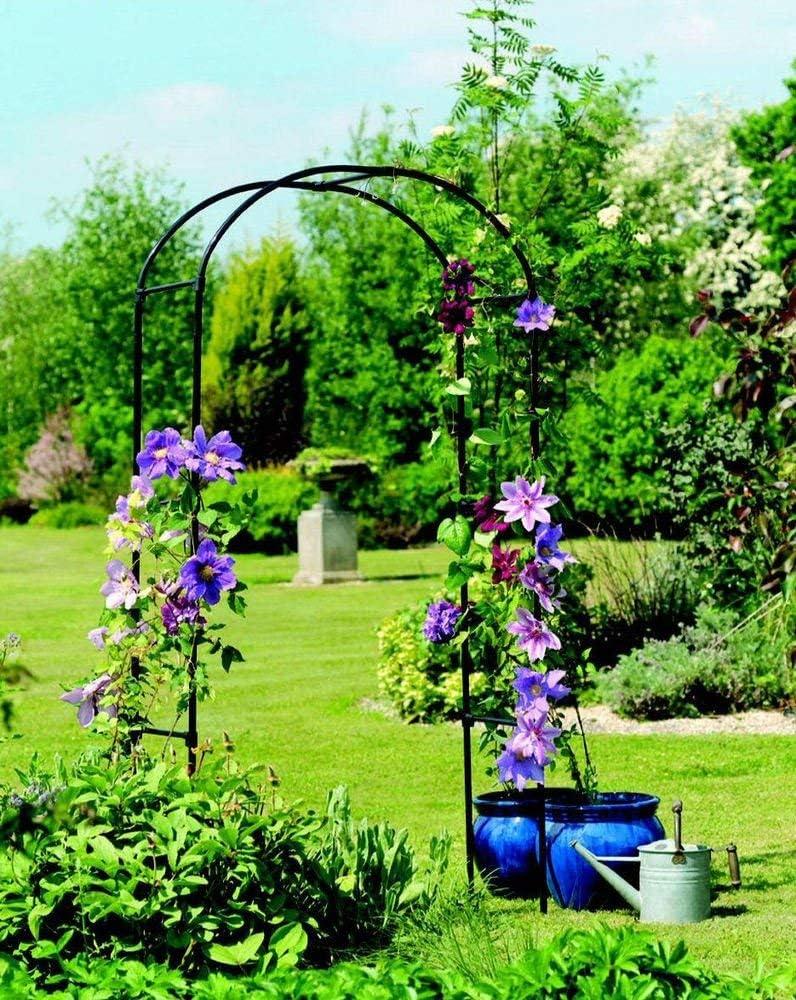 Diech Garden - Arco de Rosa para Plantas trepadoras, Rosas ...
