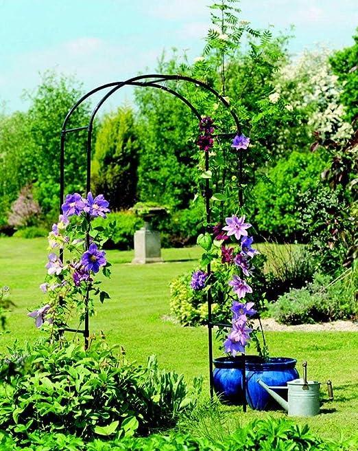 Diech Garden - Arco de Rosa para Plantas trepadoras, Rosas, Interior/ Exterior, Ideal para Patio, césped, Patio, decoración de Boda: Amazon.es: Jardín