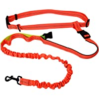 Ppogoo Hands Free Dog Leash with D-Ring (Orange)