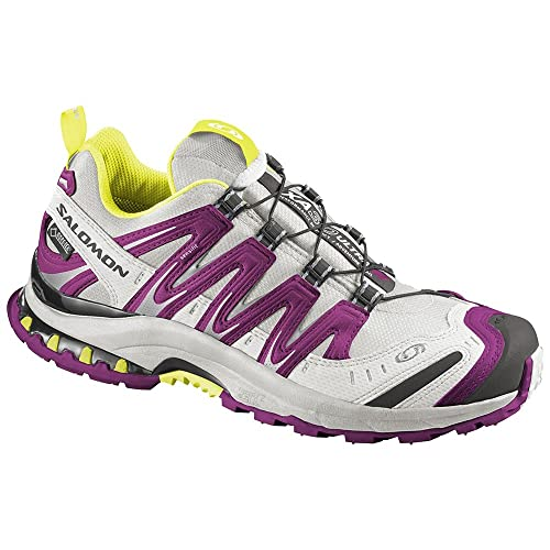 Grau Salomon XA Pro 3D Ultra 2 GORE TEX Waterproof Trail
