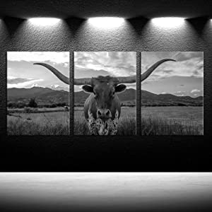 iKNOW FOTO Farm Animals Art Prints Black and White Highland Cattle with Long Horns Picture Printed on Canvas Painting for Home Decor Modern Living Room Decorations Framed Ready to Hang 12x16inchx3pcs