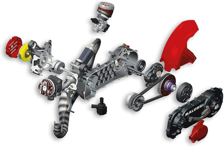 Malossi 4917546 Motor Rc One 94cc Yamaha Aerox 50 Auto