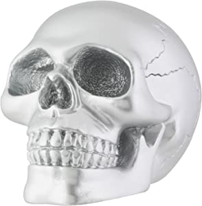 Silver Skull Head Collectible Skeleton Decoration Statue