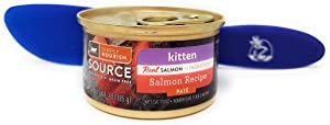SIMPLY NOURISH Source Wet Cat Food Kitten Salmon Recipe, Pate 3oz (Pack of 12) and Especiales Cosas Spatula