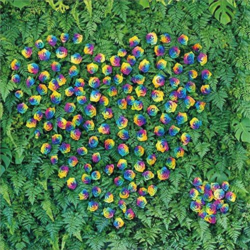 Leowefowa 5X5FT Wedding Dcoration Wallpaper Backdrop Creative Heart Shaped Rose Flowers Backdrops for Photography Green Leaves Wallpaper Romantic Vinyl Photo Background Girls Bride Studio Props (Wallpaper Leaves Creative)