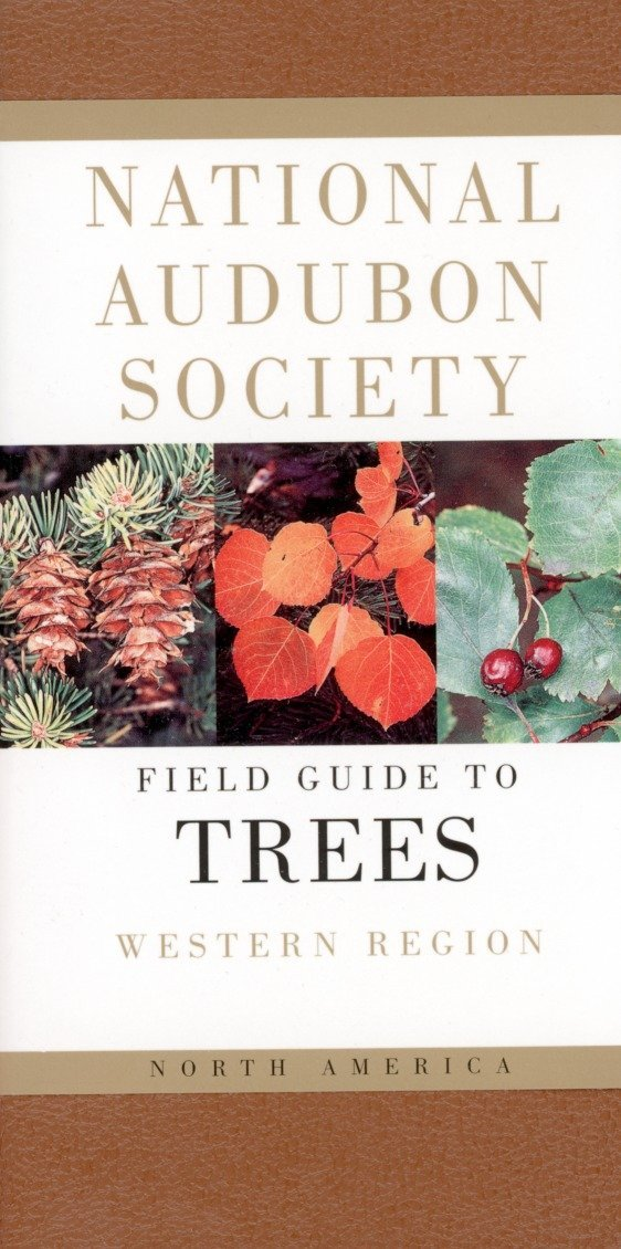 National Audubon Society Field Guide to North American Trees--W: Western Region (National Audubon Society Field Guides)