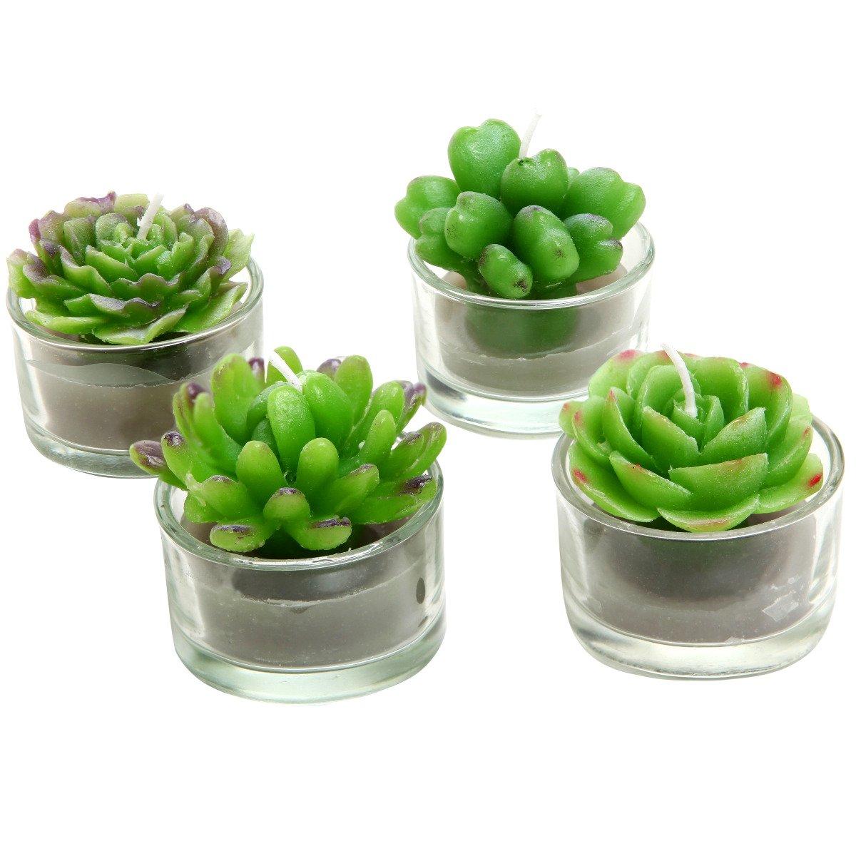 Amazon.com: Assortment Of 4 Mini Green Desert Succulent Plants Shaped  Candles / Tea Lights Table / Mantle Decorations: Home U0026 Kitchen