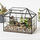 "Ferrisland Glass Terrarium Case House Planter Container for Succulents Plants Flowers Orchids Foliage and More, 9.1""x7.3""x5.4"""