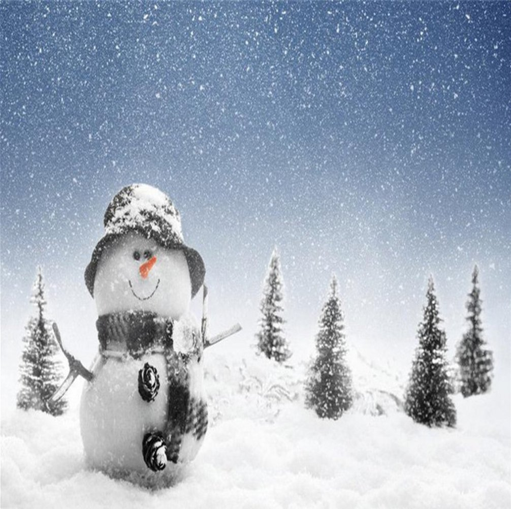 CoscosX 30 Pack SAP Magic Snow Instant Fake Fluffy Snow Powder Reusable DIY Artificial Slime Simulation Snow Super Absorbant Christmas Wedding Festival Market Fairy House Decor Children Toys