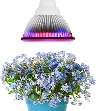 12W E27 Socket LED Plant Grow Light for Hydroponic Garden and Greenhouse