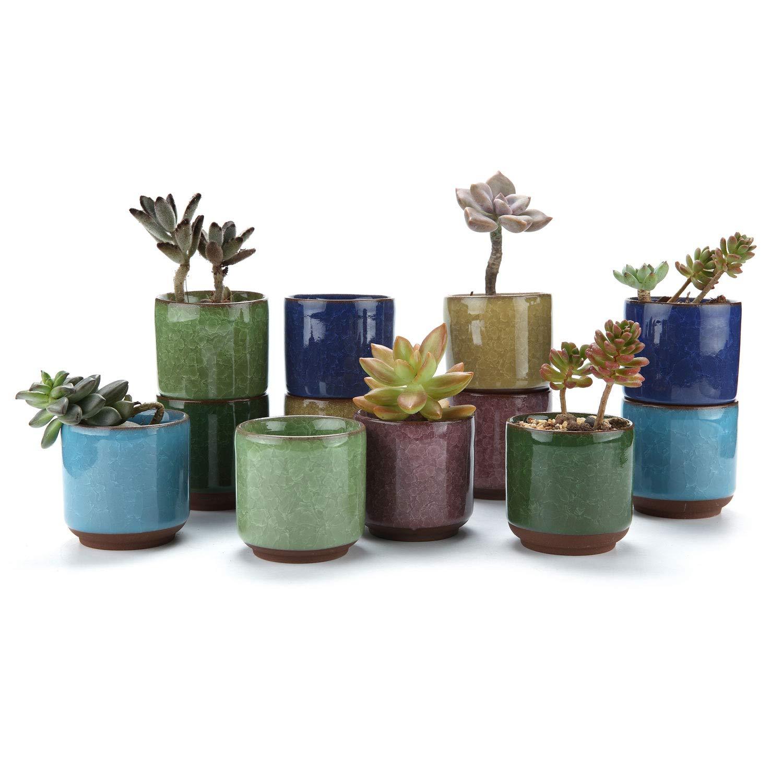 T4U 2.5 Inch Ceramic Ice Crack Zisha Raised Serial Succulent Plant Pot//Cactus Plant Pot Flower Pot//Container//Planter Full Colors Pack of 6