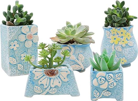 XiaZ macetas de cerámica para plantas suculentas, juego de 5 ...