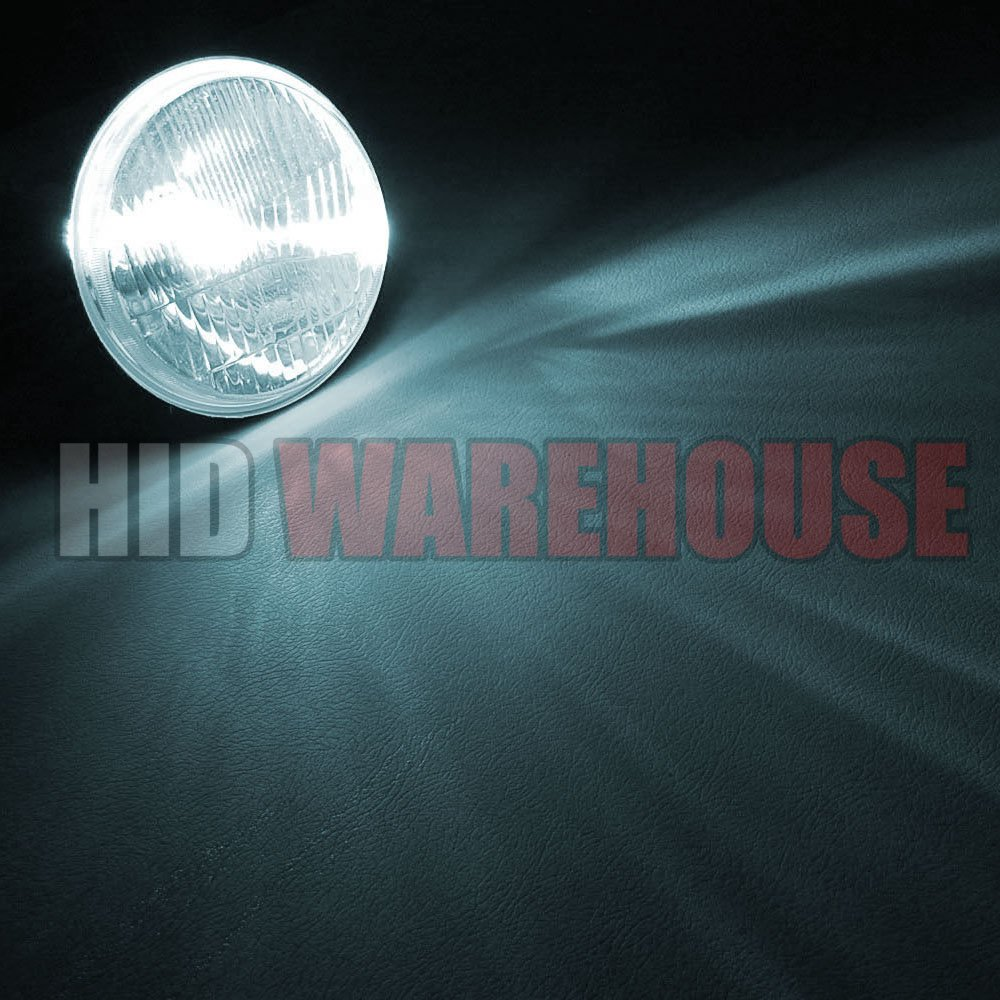 Amazon.com: HID-Warehouse HID Xenon Replacement Bulbs - 9012 6000K - Light Blue (1 Pair) - 2 Year Warranty: Automotive