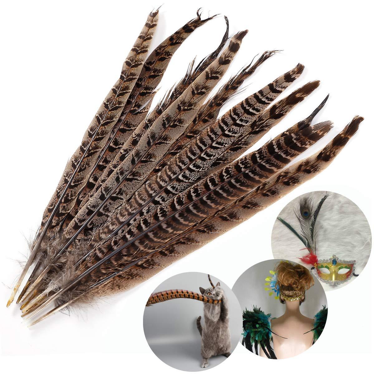 /30/cm Naturale Surepromise 10PCS fagiano piume per capelli cappelli Crafts Home wedding party 25/