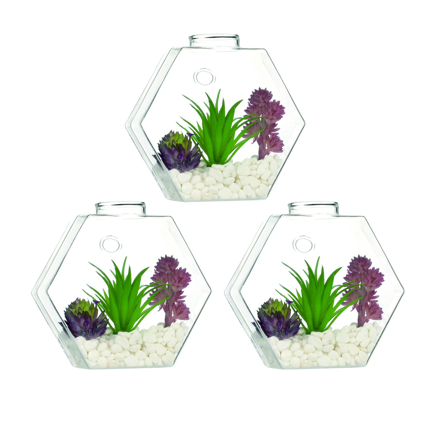 Pack of 3 Medium Glass Hexagon Wall Terrariums Succulents Plants Planters Wall Mounted Flower Vase DIY Gift for Home Decorate Living Room or Bedroom