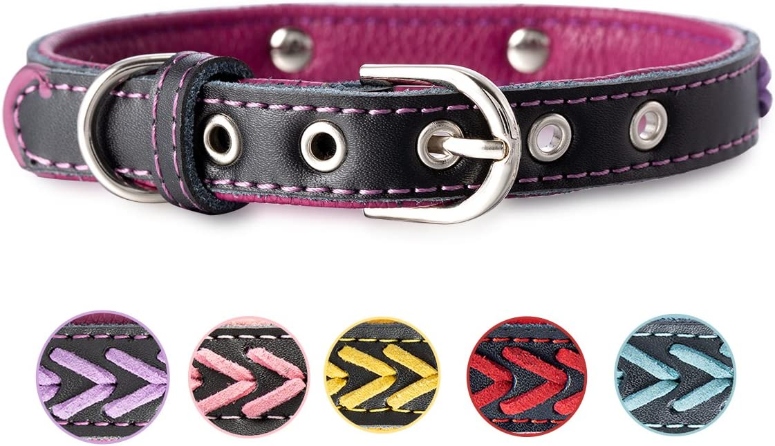 7Morning Leder Hundehalsband Halsb/änder mit Name Gravur Hundemarke Personalisierte Haustier lederhalsb/änder