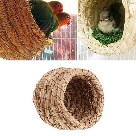 Ogquaton Nido de pájaro Natural StraWoven - Jaula de Loros Pigeon ...