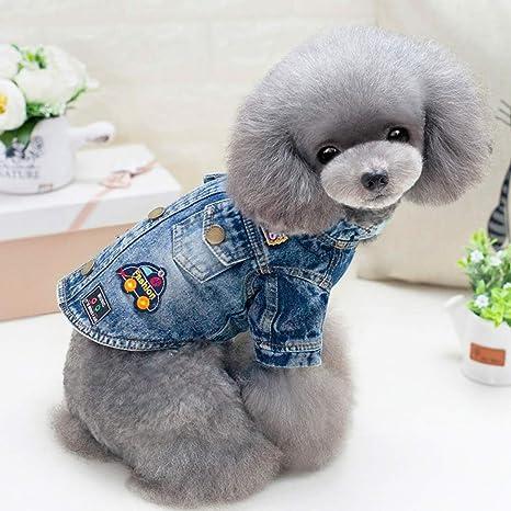 Pet Jeans, cachorro de perro ocasional de dos piernas ...