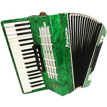 Nice ruso teclado acordeón Aelita 96 Bass, 7 registros, hermoso sonido 895, Folk Accordian para venta: Amazon.es: Instrumentos musicales