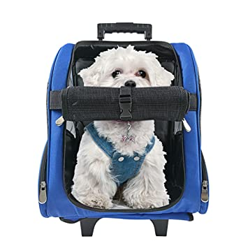 Amazon.com : HARBO Pet Travel Carrier Rolling Backpack for Dogs ...