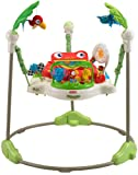 Amazon Price History for:Fisher-Price Rainforest Jumperoo