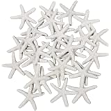 Ljy 25 pezzi bianco resina matita finger Starfish for wedding Decor, home decor e progetti creativi