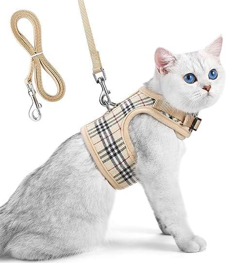 arnes y correa para gato- cómodo y seguro arnes gato: Amazon.es ...