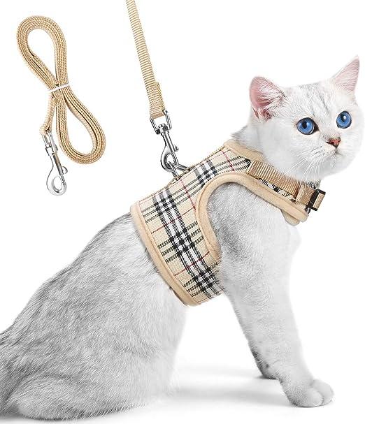 Unihubys arnes y correa para gato- cómodo y seguro arnes gato: Amazon.es: Productos para mascotas