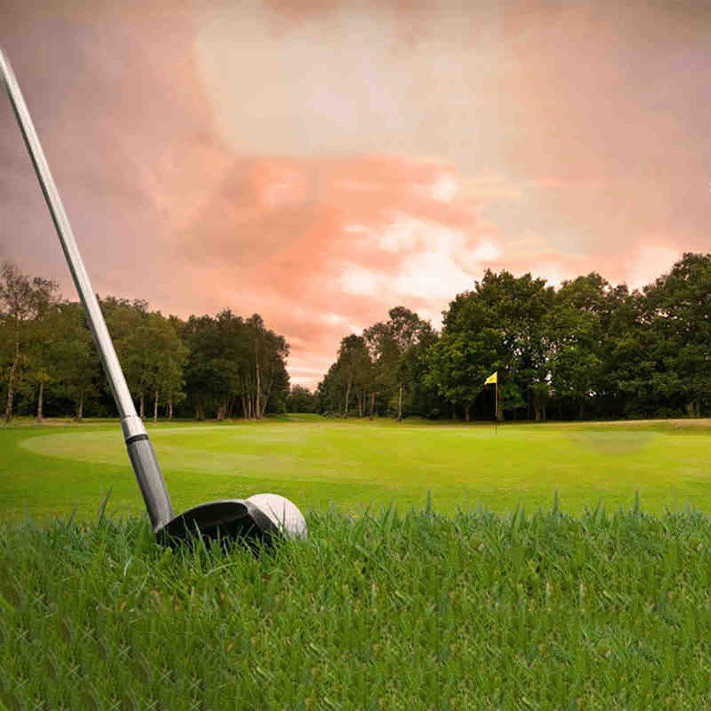 WENZHEゴルフパッティング練習用マット人工芝ラバーソール、幅1/2メートル、草長さ12 / 16mm(色:A-12mm、サイズ:1 * 2m)   B076M5NT7D