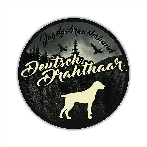 Auto Aufkleber Jagdhund Digi Deutsch Drahthaar Dd Vorstehhund Hundeaufkleber Siviwonder Jagd Auto