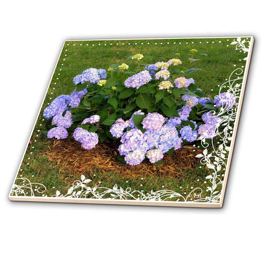 3dRose Happiness is Being A Gramma-Ceramic Tile Multicolor ct/_223969/_2 6-inch